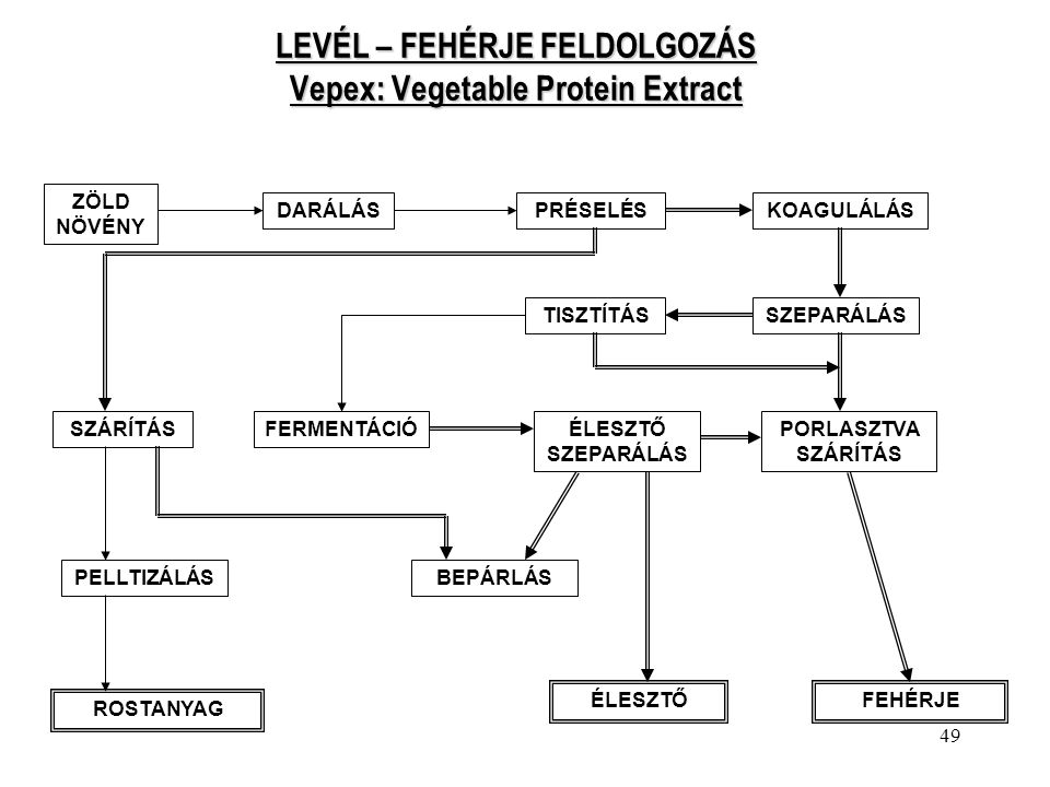 49 LEVÉL – FEHÉRJE FELDOLGOZÁS Vepex: Vegetable Protein Extract ZÖLD NÖVÉNY DARÁLÁSPRÉSELÉSKOAGULÁLÁS TISZTÍTÁSSZEPARÁLÁS SZÁRÍTÁSFERMENTÁCIÓÉLESZTŐ S