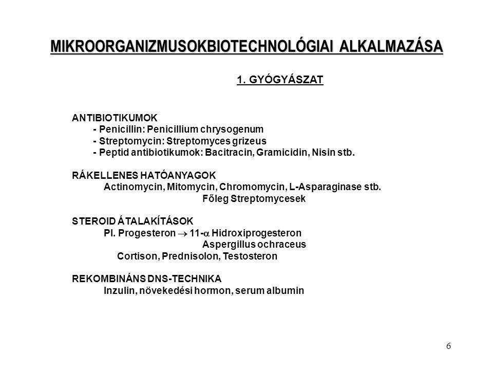 6 MIKROORGANIZMUSOKBIOTECHNOLÓGIAI ALKALMAZÁSA 1. GYÓGYÁSZAT ANTIBIOTIKUMOK - Penicillin: Penicillium chrysogenum - Streptomycin: Streptomyces grizeus