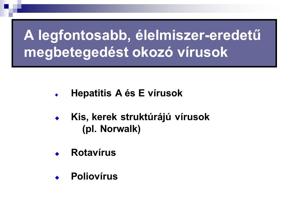 A legfontosabb, élelmiszer-eredetű megbetegedést okozó vírusok  Hepatitis A és E vírusok  Kis, kerek struktúrájú vírusok (pl. Norwalk)  Rotavírus 