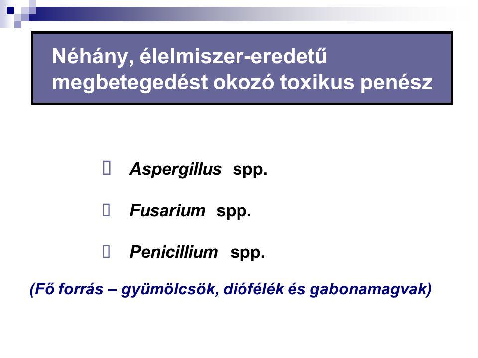 Néhány, élelmiszer-eredetű megbetegedést okozó toxikus penész  Aspergillus spp.  Fusarium spp.  Penicillium spp. (Fő forrás – gyümölcsök, diófélék