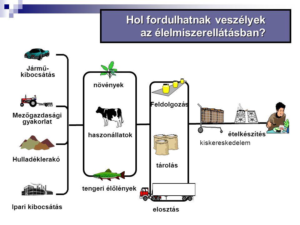 Ipari kibocsátás Hulladéklerakó Jármű- kibocsátás Mezőgazdasági gyakorlat Hol fordulhatnak veszélyek az élelmiszerellátásban? Feldolgozás tárolás étel