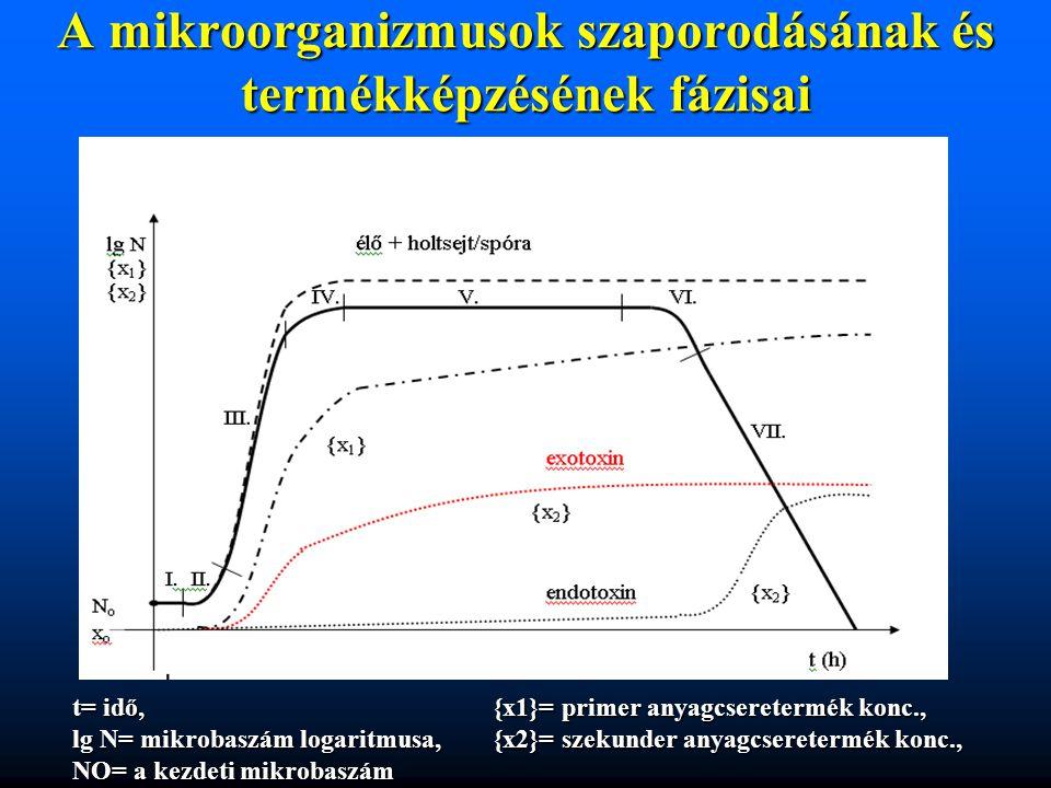 A mikroorganizmusok szaporodásának és termékképzésének fázisai t= idő,{x1}= primer anyagcseretermék konc., lg N= mikrobaszám logaritmusa, {x2}= szekun