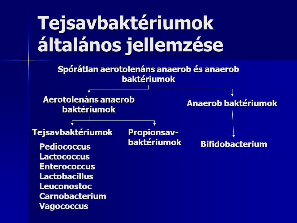 Tejsavbaktériumok általános jellemzése Spórátlan aerotolenáns anaerob és anaerob baktériumok Aerotolenáns anaerob baktériumok Anaerob baktériumok TejsavbaktériumokPropionsav-baktériumok Bifidobacterium PediococcusLactococcusEnterococcusLactobacillusLeuconostocCarnobacteriumVagococcus