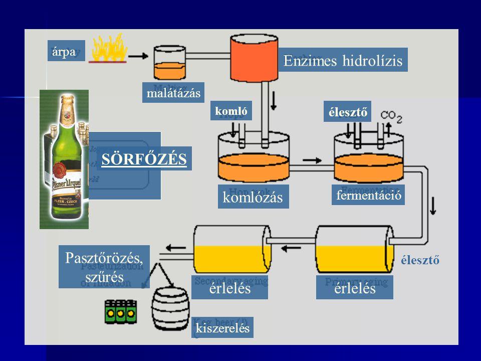 árpa malátázás Enzimes hidrolízis komlózás fermentáció élesztő érlelés Pasztőrözés, szűrés c kiszerelés SÖRFŐZÉS komló élesztő