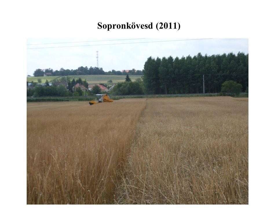Sopronkövesd (2011)