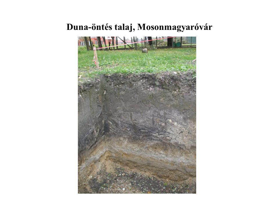 Duna-öntés talaj, Mosonmagyaróvár