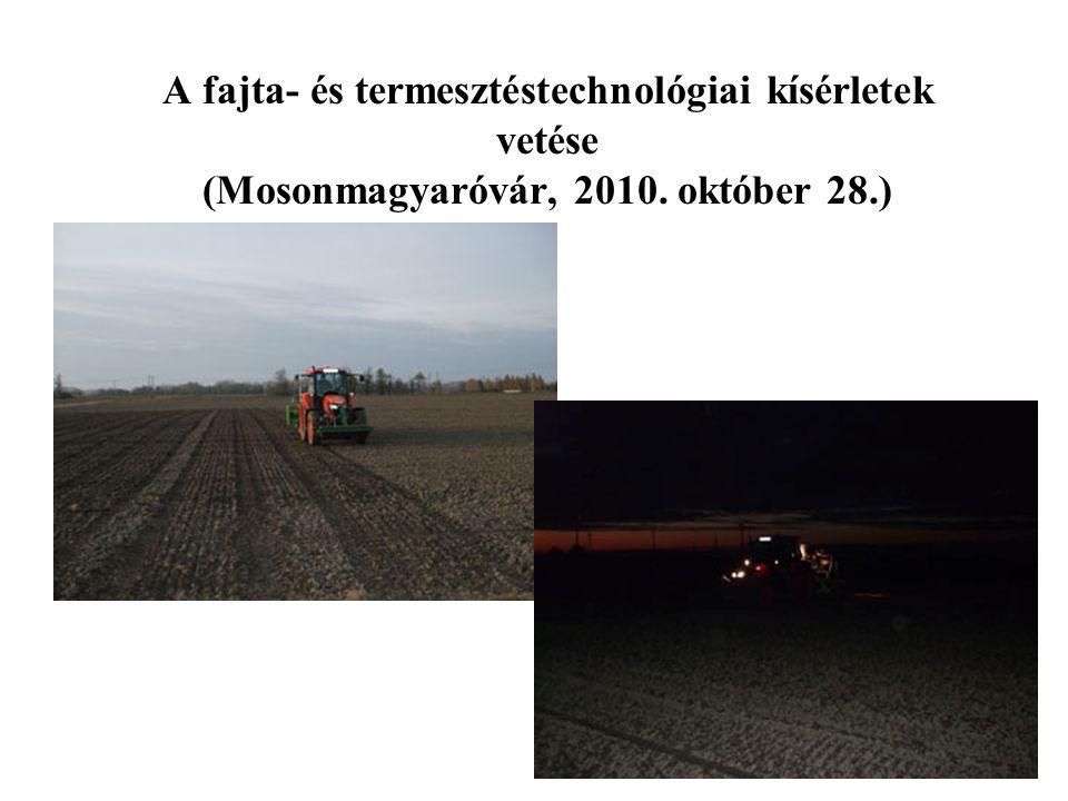 A 30 fajtás őszi búza kísérlet jellemző eredményei (1) (2010/2011.) TulajdonságM.e.Átlag Mini- mum Fajta Maxi- mum Fajta Szign.