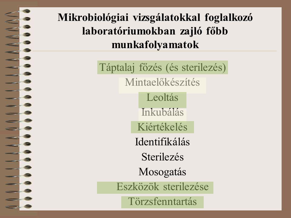 Mikrobiológiai vizsgálatokkal foglalkozó laboratóriumokban zajló főbb munkafolyamatok Táptalaj főzés (és sterilezés) Mintaelőkészítés Leoltás Inkubálá