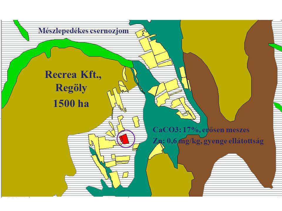 Recrea Kft., Regöly 1500 ha Mészlepedékes csernozjom CaCO3: 17%, erősen meszes Zn: 0,6 mg/kg, gyenge ellátottság