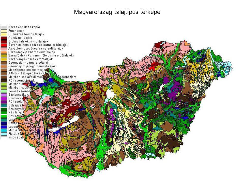 Magyarország talajtípus térképe
