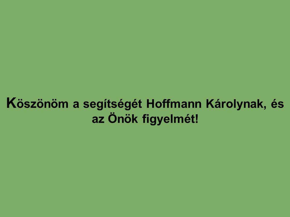 K öszönöm a segítségét Hoffmann Károlynak, és az Önök figyelmét!
