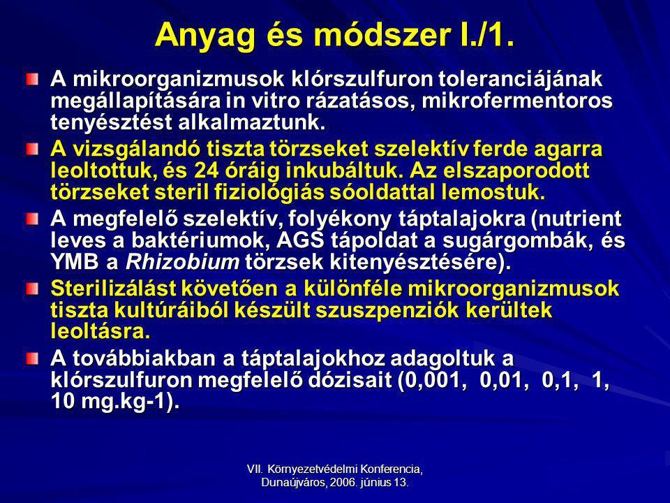 VII.Környezetvédelmi Konferencia, Dunaújváros, 2006.