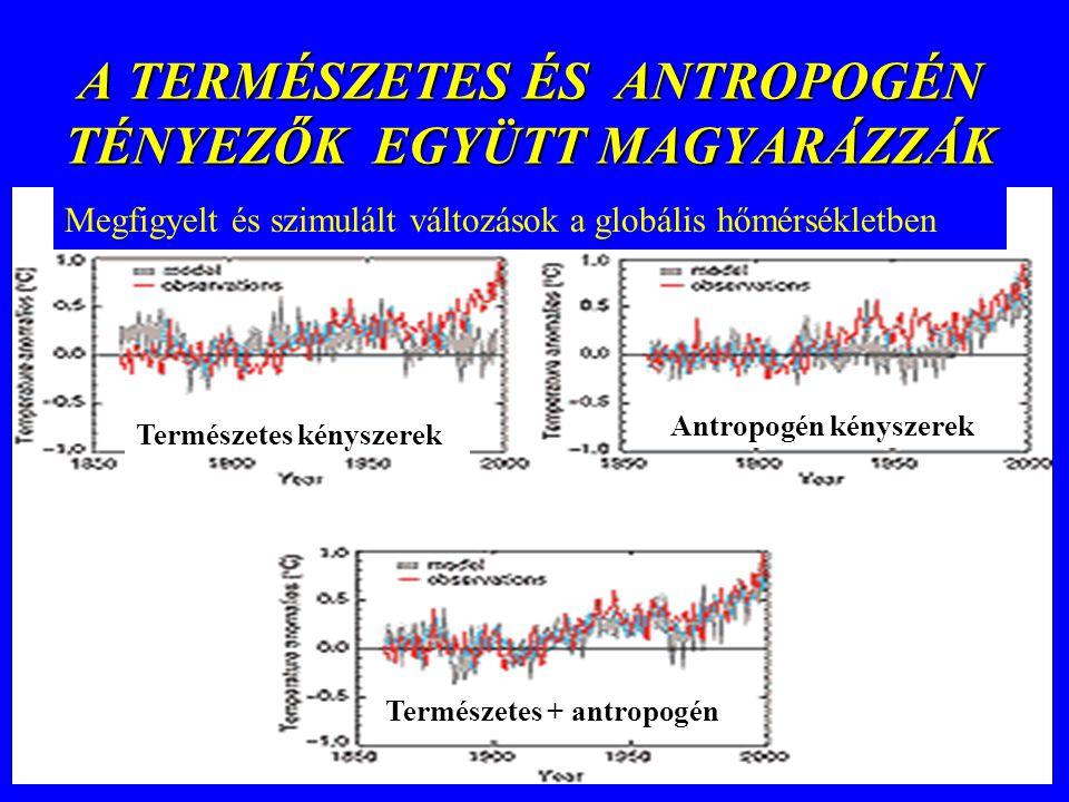 A TERMÉSZETES ÉS ANTROPOGÉN TÉNYEZŐK EGYÜTT MAGYARÁZZÁK Megfigyelt és szimulált változások a globális hőmérsékletben Természetes kényszerek Antropogén