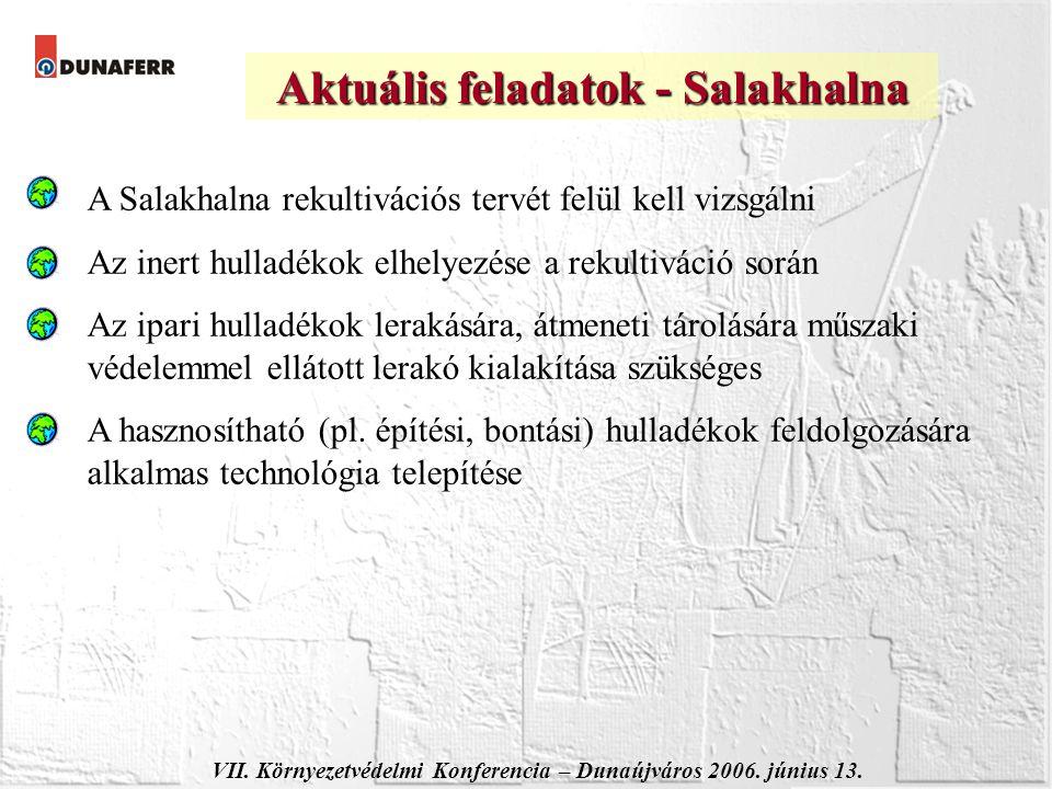 VII. Környezetvédelmi Konferencia – Dunaújváros 2006. június 13. Aktuális feladatok - Salakhalna A Salakhalna rekultivációs tervét felül kell vizsgáln