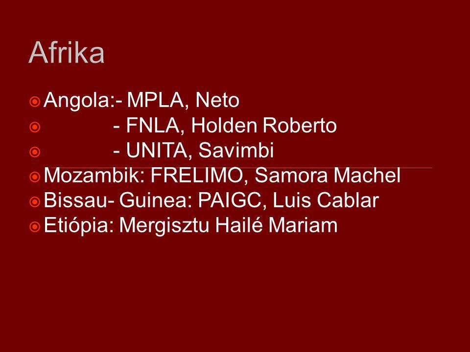 Afrika  Angola:- MPLA, Neto  - FNLA, Holden Roberto  - UNITA, Savimbi  Mozambik: FRELIMO, Samora Machel  Bissau- Guinea: PAIGC, Luis Cablar  Etiópia: Mergisztu Hailé Mariam
