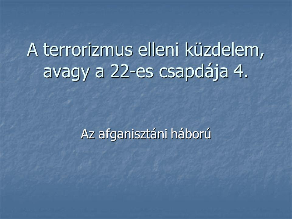 A terrorizmus elleni küzdelem, avagy a 22-es csapdája 4. Az afganisztáni háború