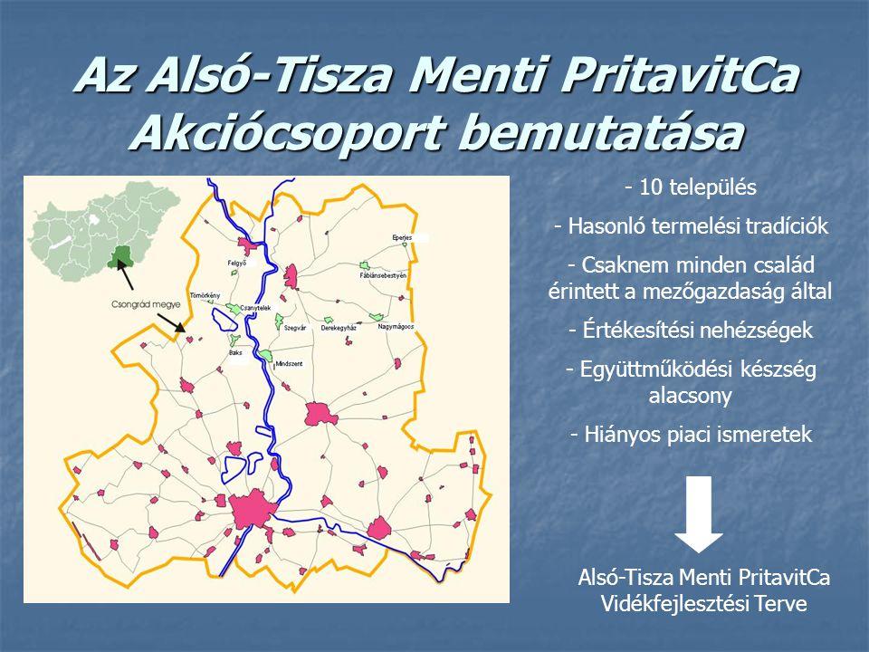 Az Alsó-Tisza Menti PritavitCa Akciócsoport bemutatása - 10 település - Hasonló termelési tradíciók - Csaknem minden család érintett a mezőgazdaság által - Értékesítési nehézségek - Együttműködési készség alacsony - Hiányos piaci ismeretek Alsó-Tisza Menti PritavitCa Vidékfejlesztési Terve