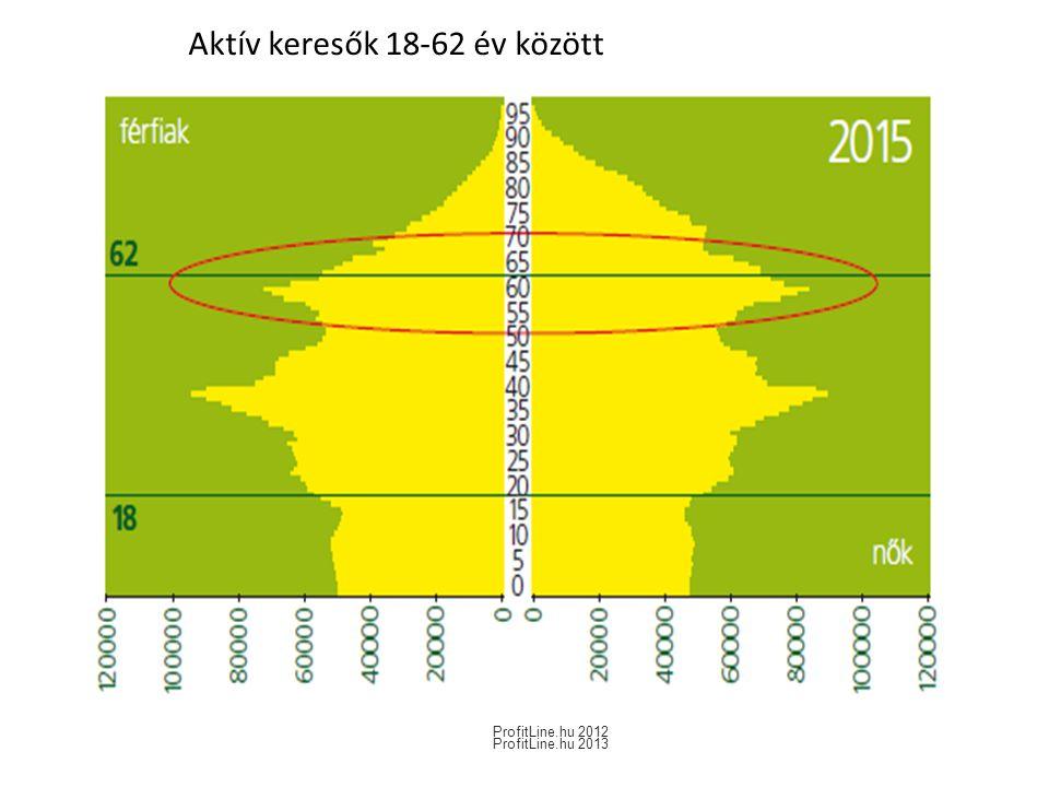 Aktív keresők 18-62 év között ProfitLine.hu 2012 ProfitLine.hu 2013