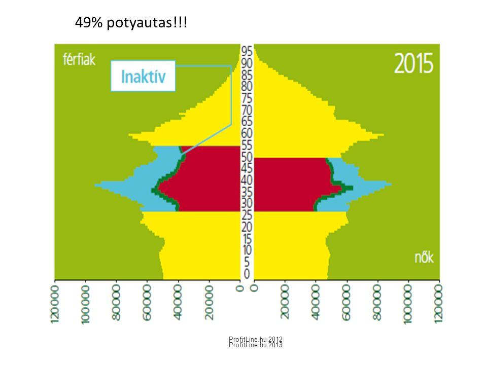 49% potyautas!!! ProfitLine.hu 2012 ProfitLine.hu 2013