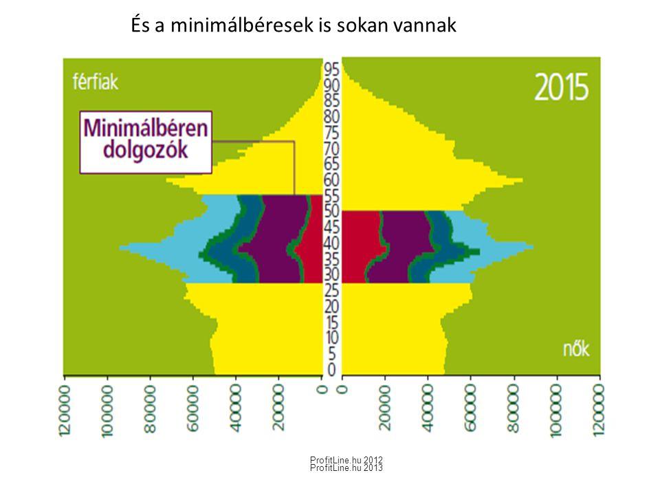 És a minimálbéresek is sokan vannak ProfitLine.hu 2012 ProfitLine.hu 2013