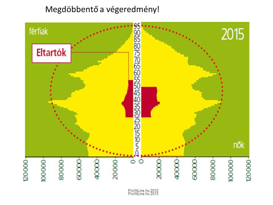 Megdöbbentő a végeredmény! ProfitLine.hu 2012 ProfitLine.hu 2013