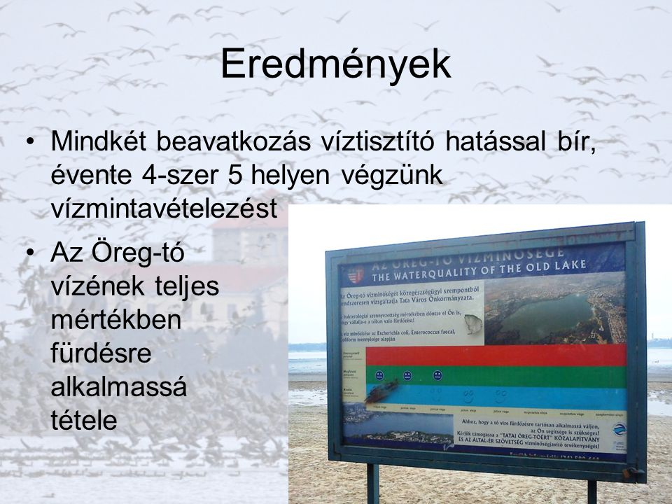 Jövőbeni tervek Öreg-tó rehabilitáció II.