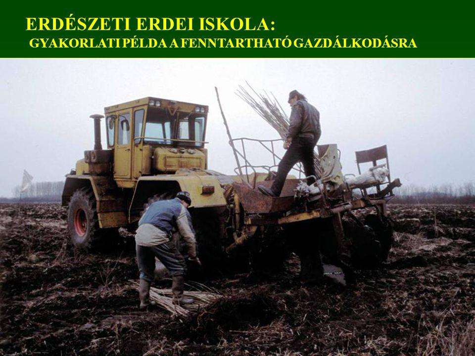 ERDÉSZETI ERDEI ISKOLA: GYAKORLATI PÉLDA A FENNTARTHATÓ GAZDÁLKODÁSRA