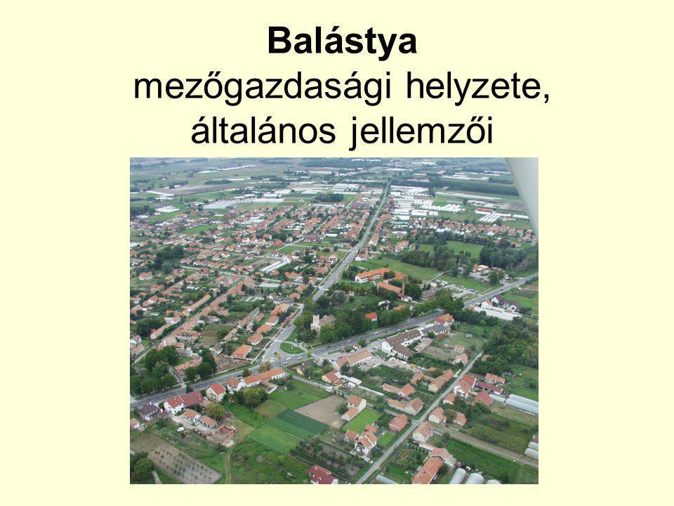 Balástya mezőgazdasági helyzete, általános jellemzői