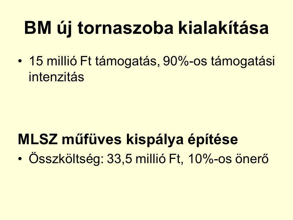 BM új tornaszoba kialakítása 15 millió Ft támogatás, 90%-os támogatási intenzitás MLSZ műfüves kispálya építése Összköltség: 33,5 millió Ft, 10%-os ön