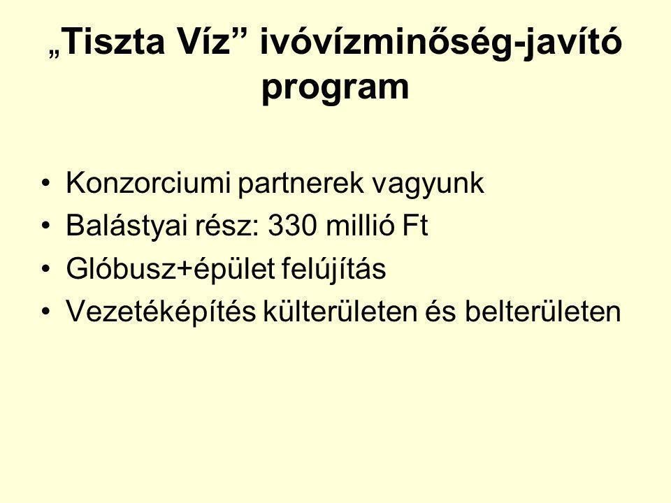 """""""Tiszta Víz ivóvízminőség-javító program Konzorciumi partnerek vagyunk Balástyai rész: 330 millió Ft Glóbusz+épület felújítás Vezetéképítés külterületen és belterületen"""
