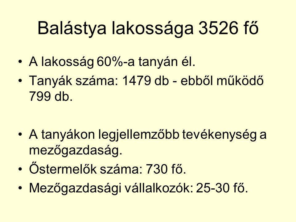 Balástya lakossága 3526 fő A lakosság 60%-a tanyán él. Tanyák száma: 1479 db - ebből működő 799 db. A tanyákon legjellemzőbb tevékenység a mezőgazdasá