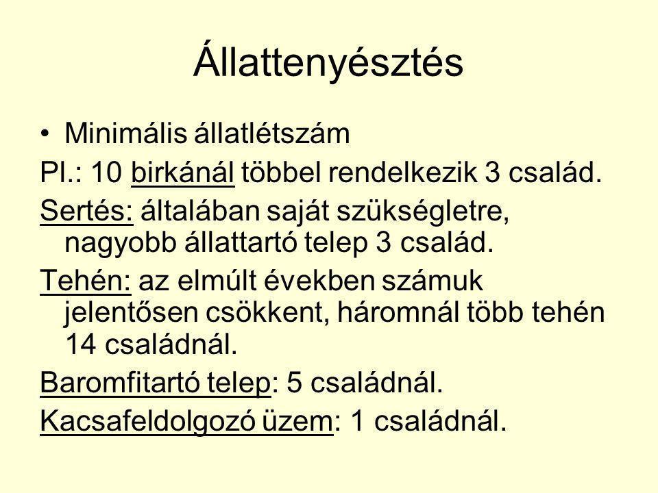 Állattenyésztés Minimális állatlétszám Pl.: 10 birkánál többel rendelkezik 3 család. Sertés: általában saját szükségletre, nagyobb állattartó telep 3