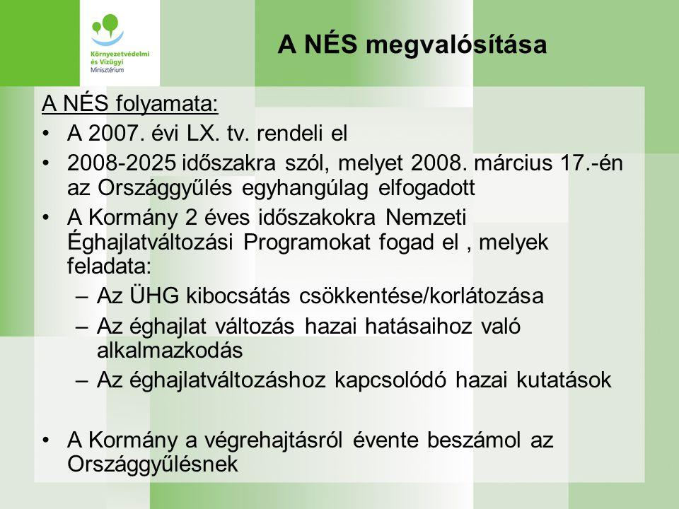 A NÉS megvalósítása A NÉS folyamata: A 2007.évi LX.