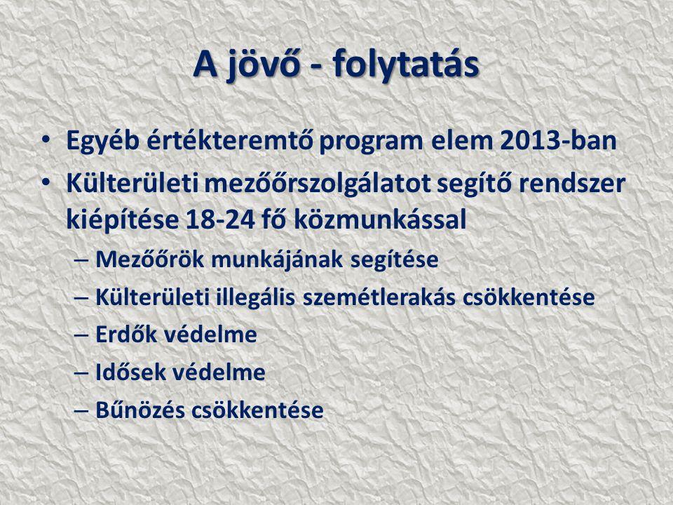 A jövő - folytatás Egyéb értékteremtő program elem 2013-ban Külterületi mezőőrszolgálatot segítő rendszer kiépítése 18-24 fő közmunkással – Mezőőrök munkájának segítése – Külterületi illegális szemétlerakás csökkentése – Erdők védelme – Idősek védelme – Bűnözés csökkentése