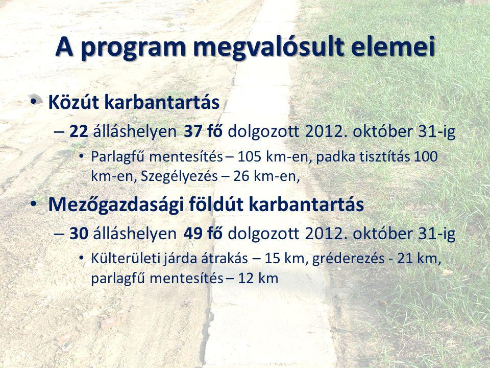 A program megvalósult elemei Közút karbantartás – 22 álláshelyen 37 fő dolgozott 2012. október 31-ig Parlagfű mentesítés – 105 km-en, padka tisztítás