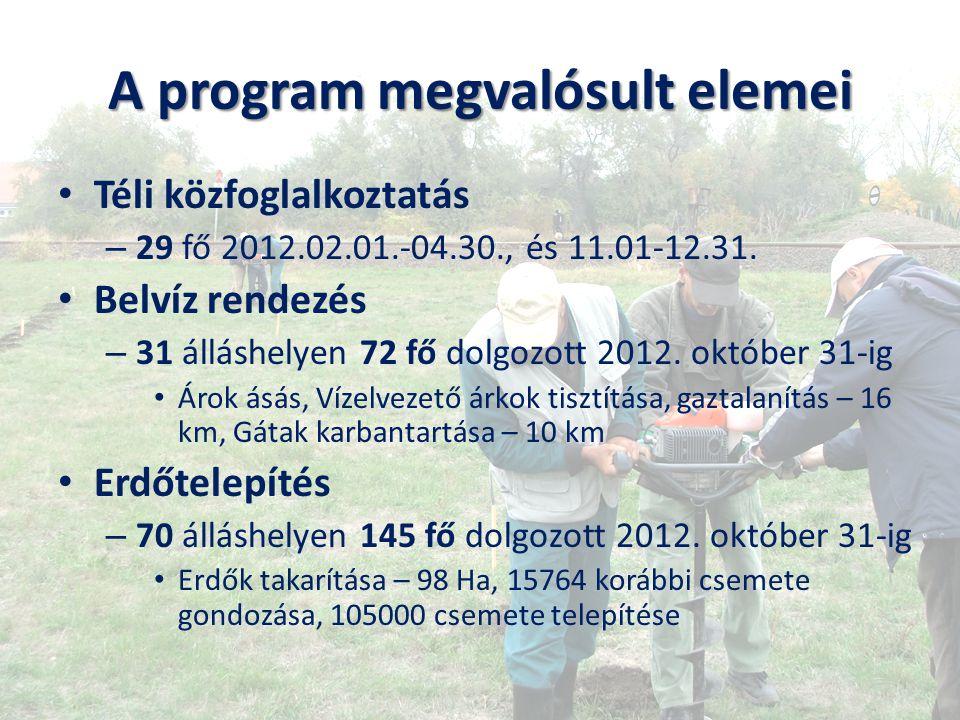 A program megvalósult elemei Téli közfoglalkoztatás – 29 fő 2012.02.01.-04.30., és 11.01-12.31. Belvíz rendezés – 31 álláshelyen 72 fő dolgozott 2012.