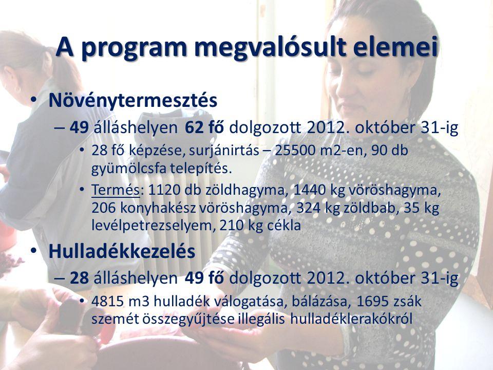 A program megvalósult elemei Növénytermesztés – 49 álláshelyen 62 fő dolgozott 2012. október 31-ig 28 fő képzése, surjánirtás – 25500 m2-en, 90 db gyü