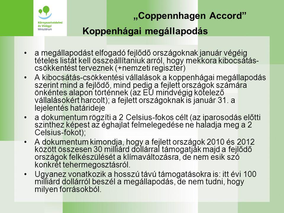 """""""Coppennhagen Accord"""" Koppenhágai megállapodás a megállapodást elfogadó fejlődő országoknak január végéig tételes listát kell összeállítaniuk arról, h"""