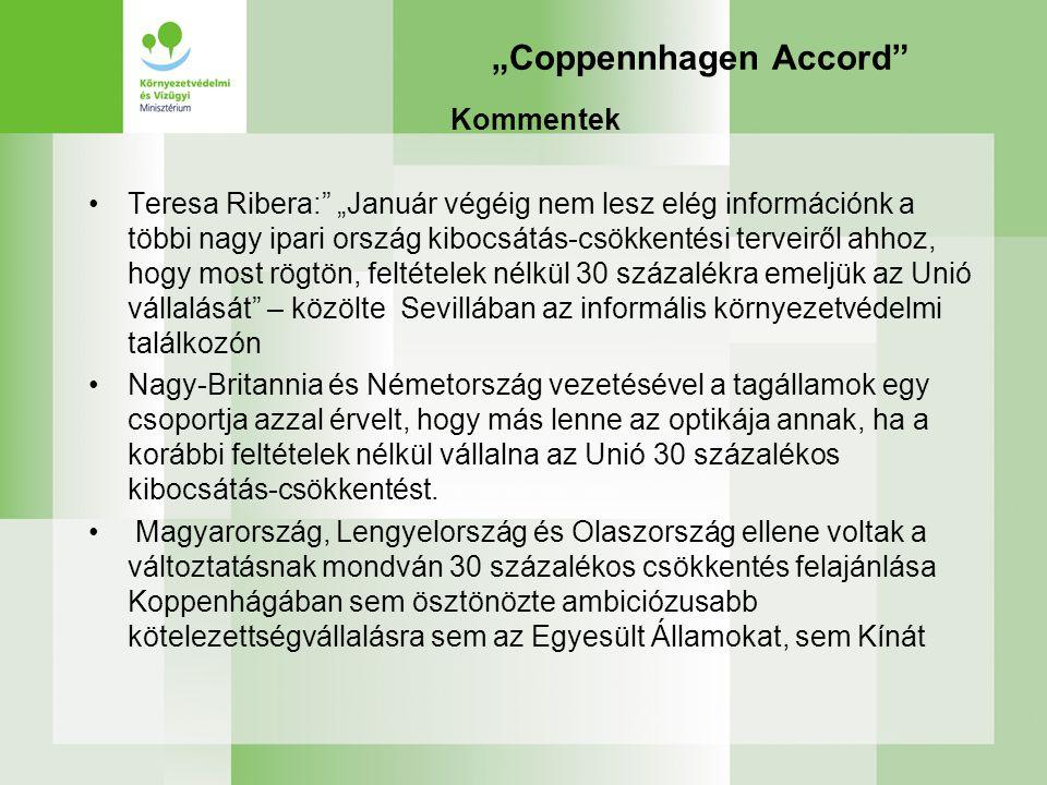 """""""Coppennhagen Accord"""" Kommentek Teresa Ribera:"""" """"Január végéig nem lesz elég információnk a többi nagy ipari ország kibocsátás-csökkentési terveiről a"""