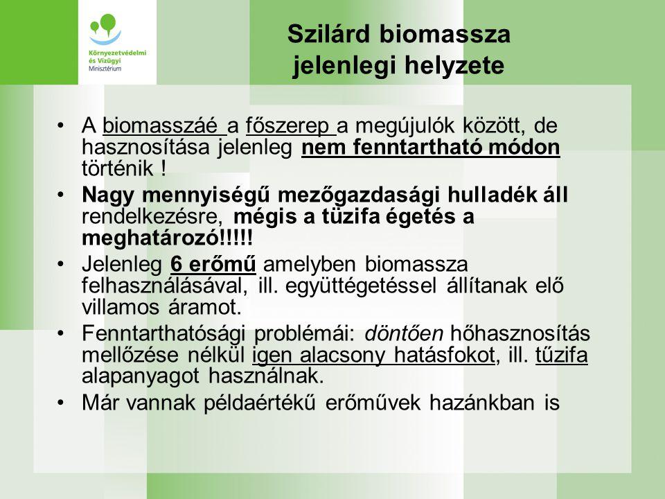 Szilárd biomassza jelenlegi helyzete A biomasszáé a főszerep a megújulók között, de hasznosítása jelenleg nem fenntartható módon történik ! Nagy menny