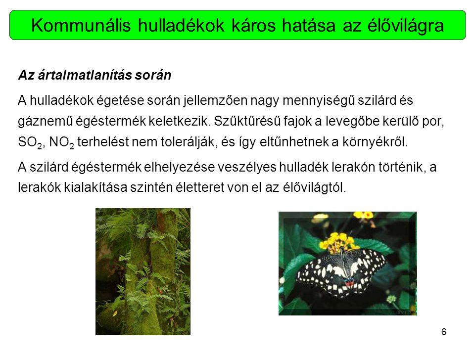 7 Az ártalmatlanítás során Jelenleg Magyarországon kétféle kommunális hulladékok ártalmatlanítására szolgáló módszer elterjedt: a lerakás és az égetés.