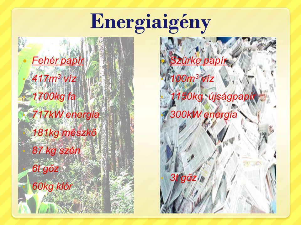Energiaigény Fehér papír 417m 3 víz 1700kg fa 717kW energia 181kg mészkő 87 kg szén 6t gőz 60kg klór Szürke papír 100m 3 víz 1150kg újságpapír 300kW e