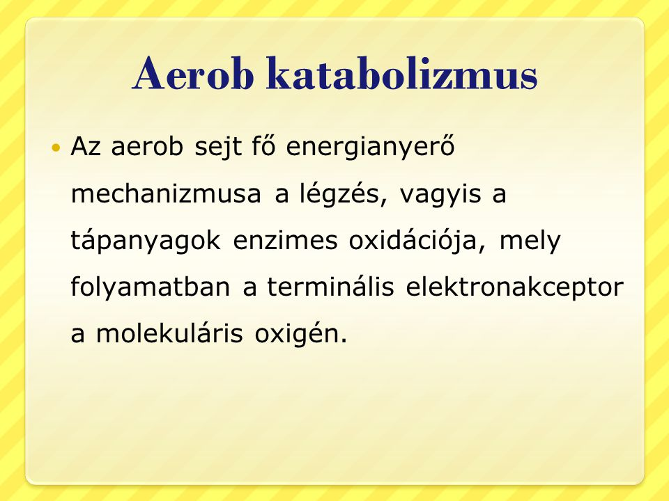 Aerob katabolizmus Az aerob sejt fő energianyerő mechanizmusa a légzés, vagyis a tápanyagok enzimes oxidációja, mely folyamatban a terminális elektron