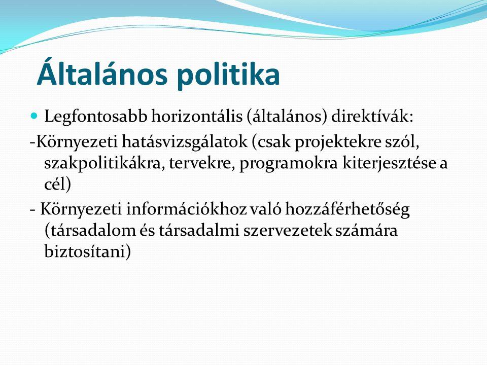 Általános politika Legfontosabb horizontális (általános) direktívák: -Környezeti hatásvizsgálatok (csak projektekre szól, szakpolitikákra, tervekre, programokra kiterjesztése a cél) - Környezeti információkhoz való hozzáférhetőség (társadalom és társadalmi szervezetek számára biztosítani)