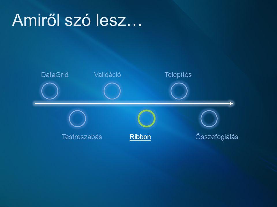 Amiről szó lesz… DataGrid Testreszabás Validáció Ribbon Telepítés Összefoglalás