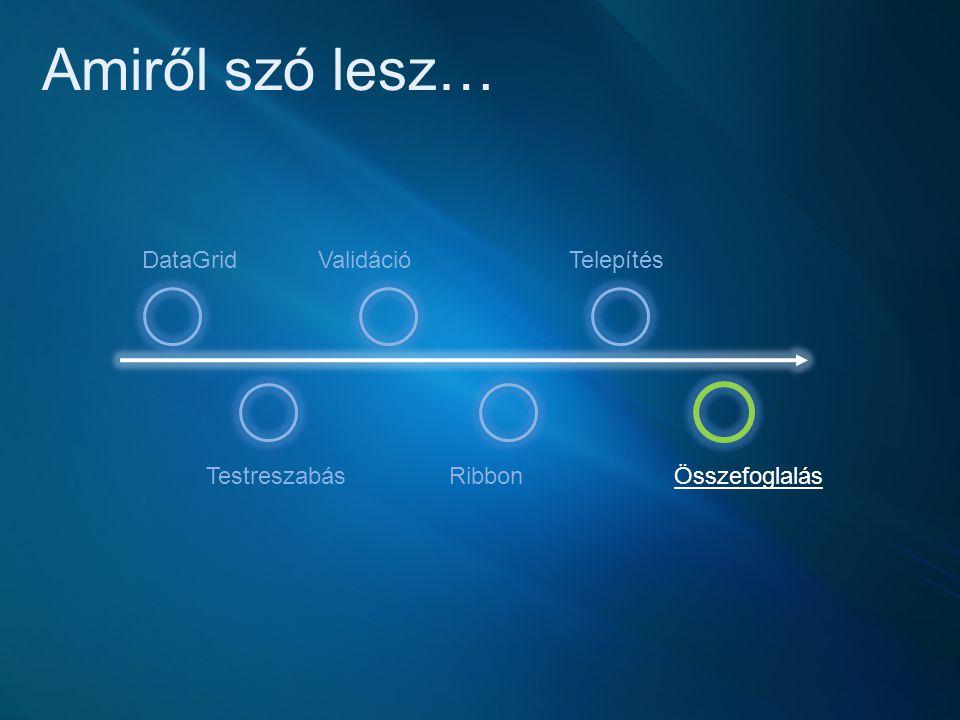 Amiről szó lesz… Testreszabás Validáció Ribbon Telepítés Összefoglalás DataGrid