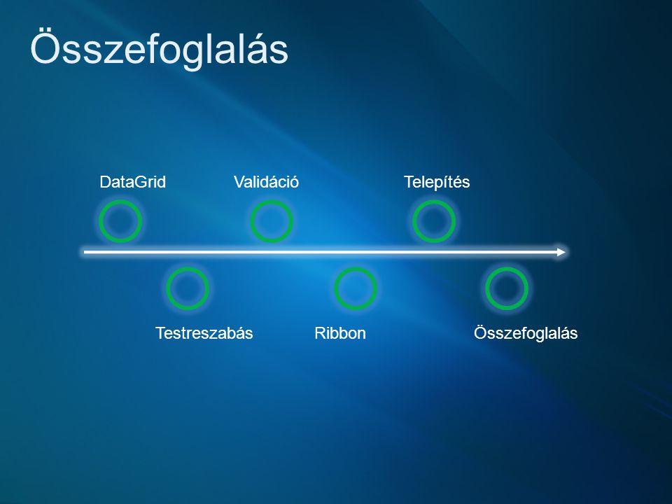 Összefoglalás DataGrid Testreszabás Validáció Ribbon Telepítés Összefoglalás