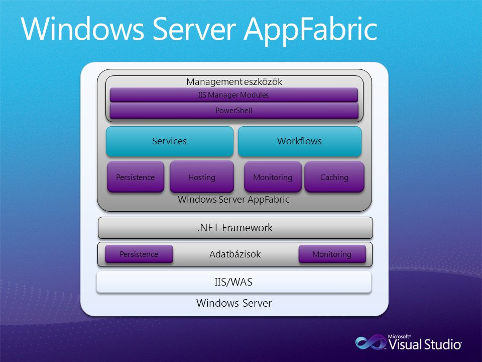 Windows Server.NET Framework Windows Server AppFabric Services Management eszközök IIS/WAS Workflows Adatbázisok Persistence Monitoring Hosting Persis