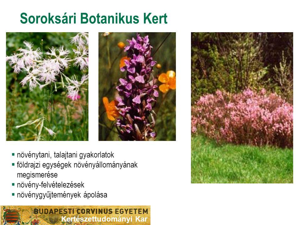 Soroksári Botanikus Kert  növénytani, talajtani gyakorlatok  földrajzi egységek növényállományának megismerése  növény-felvételezések  növénygyűjt