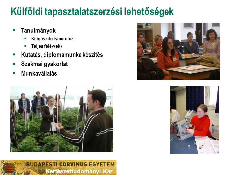 Külföldi tapasztalatszerzési lehetőségek  Tanulmányok  Kiegészítő ismeretek  Teljes félév(ek)  Kutatás, diplomamunka készítés  Szakmai gyakorlat